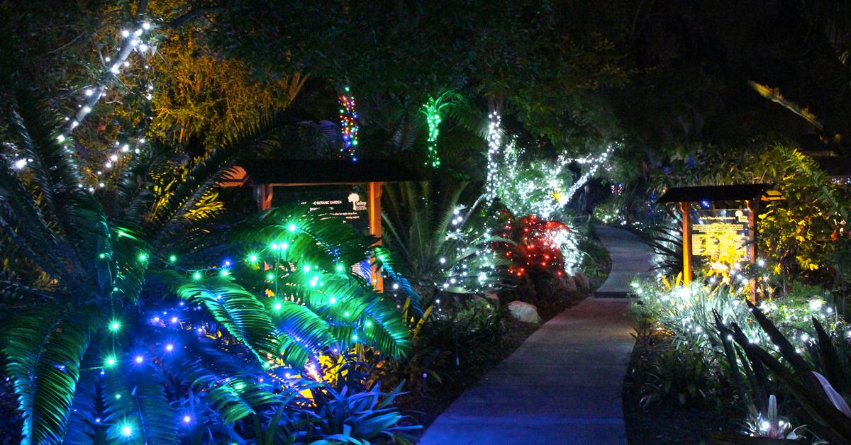 Garden of lights sd botanic garden 39 s winter wonderland for Botanical garden christmas lights